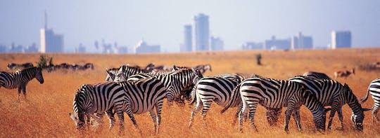 Excursão de meio dia ao Parque Nacional de Nairobi