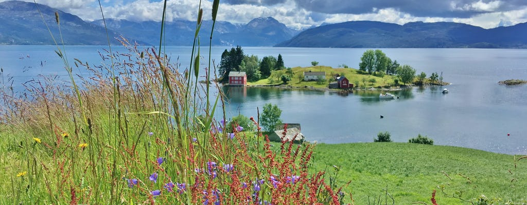Private guided tour to the queen of the fjords from Bergen
