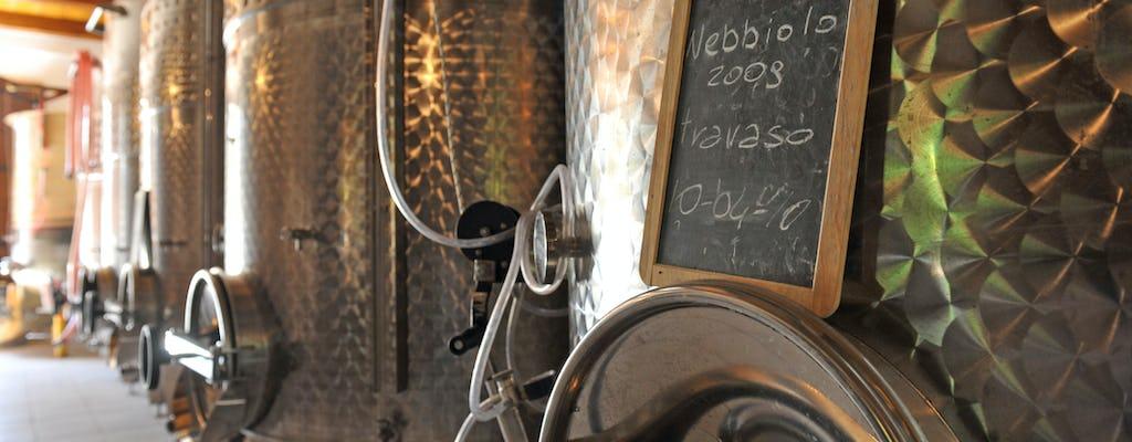 Winery visit and tasting of three DOC Fontechiara wines