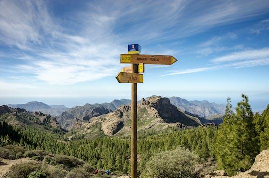 Visite de l'île de Gran Canaria depuis Fuerteventura
