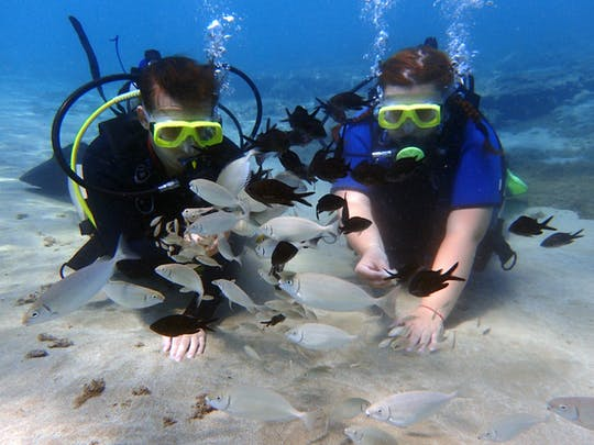 Discover Scuba Diving Small Group Tour from Ayia  Napa