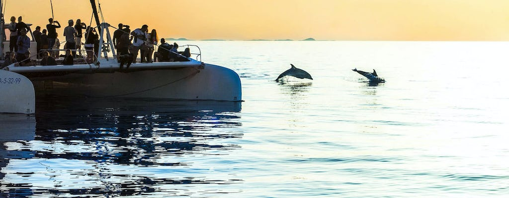 Dolphin Watching Cruise with Transfer