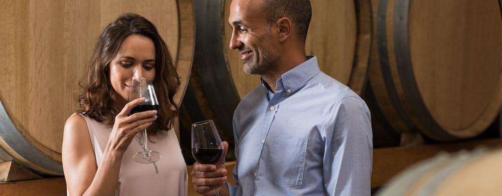 Esperienza di mezza giornata nel paese del vino
