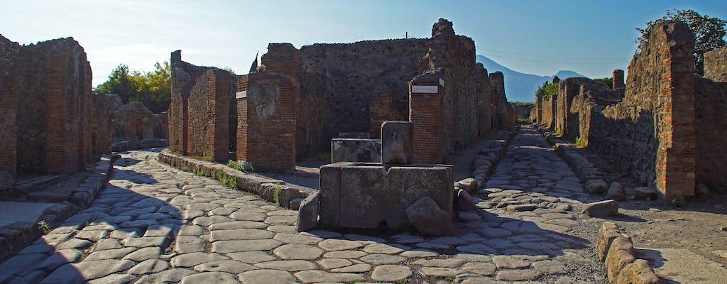 Pompeii & Herculaneum from Amalfi Coast