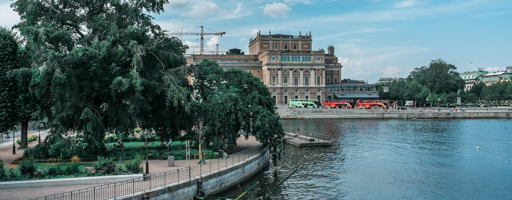 Stockholm's Old Town and Vasa Museum private walking tour