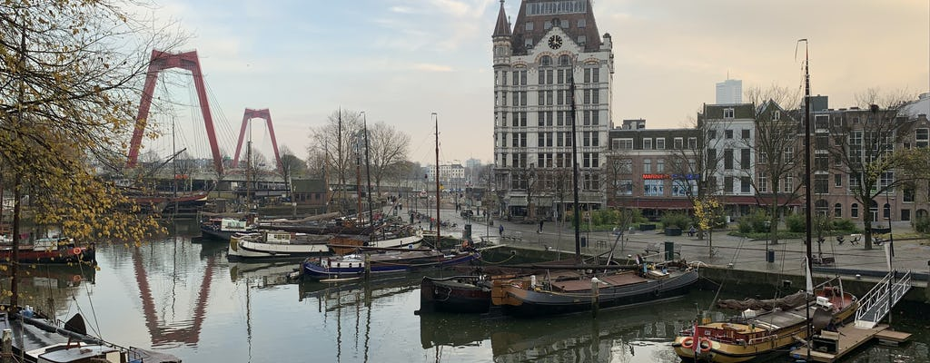Tour The Hague, Rotterdam and a pottery factory in Delft from Amsterdam