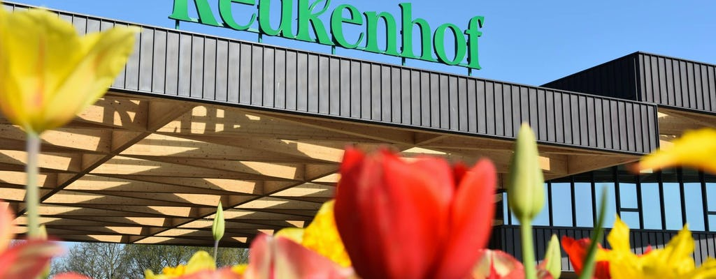 Visita guiada a Keukenhof e cruzeiro no porto de Roterdã com bilhete Euromast
