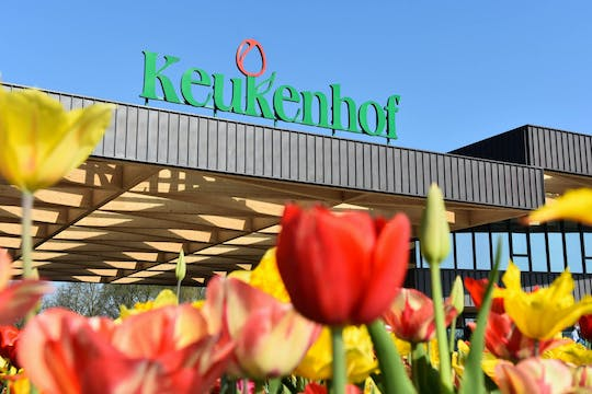Guided Keukenhof tour and Rotterdam harbor cruise with Euromast ticket