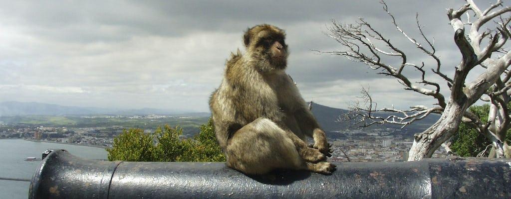 Wycieczka z przewodnikiem Gibraltar z Sewilli