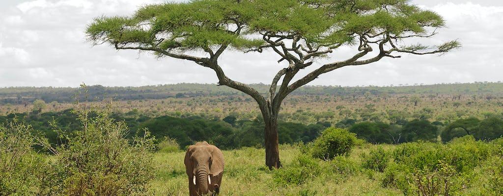 Parque Nacional Tarangire, safári de 2 dias em Arusha
