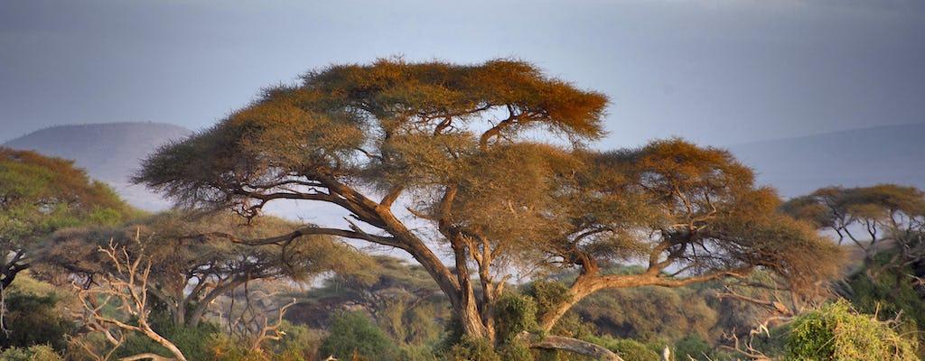 Safári de 2 dias em Lake Manyara National Park de Arusha