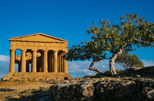 Tour di Agrigento, Valle dei Templi e Scala dei Turchi da Palermo