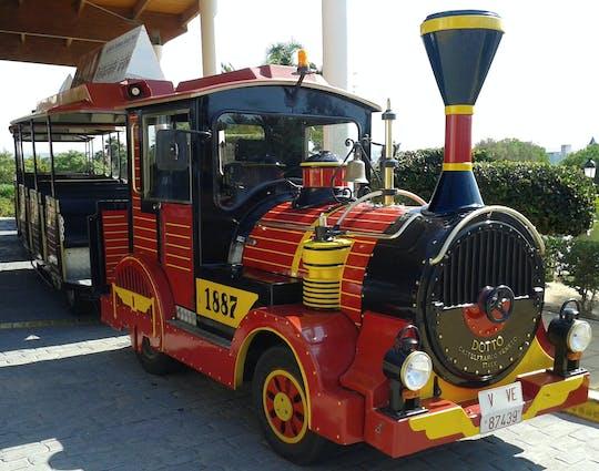 Per Mini-Zug zum Chiclana Markt
