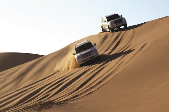 Half day desert safari from Abu Dhabi