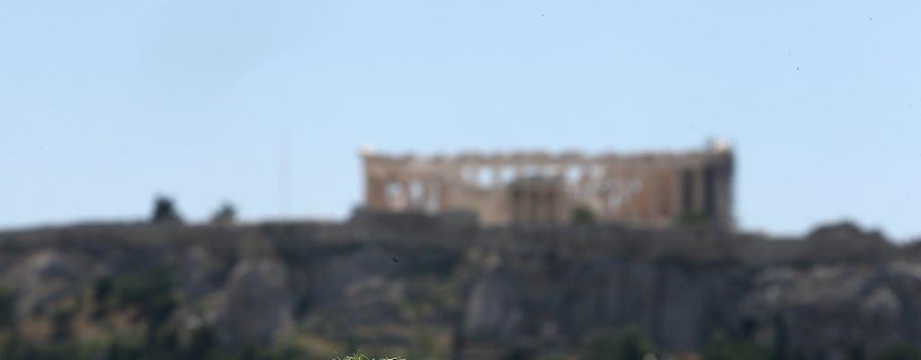 Corso di cucina mezze greca e pranzo con vista sull'Acropoli