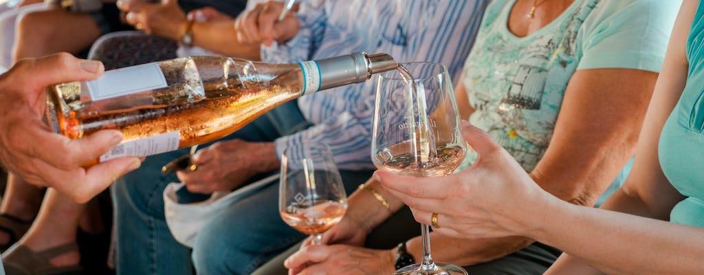 Degustação de vinhos na vinícola Il Pignetto