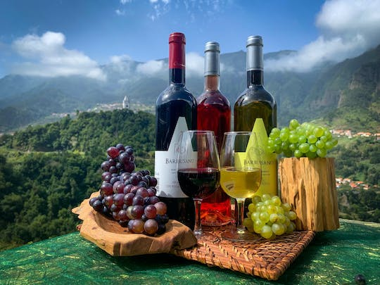 Madeira nature & wine tasting experience in open roof 4x4 tour