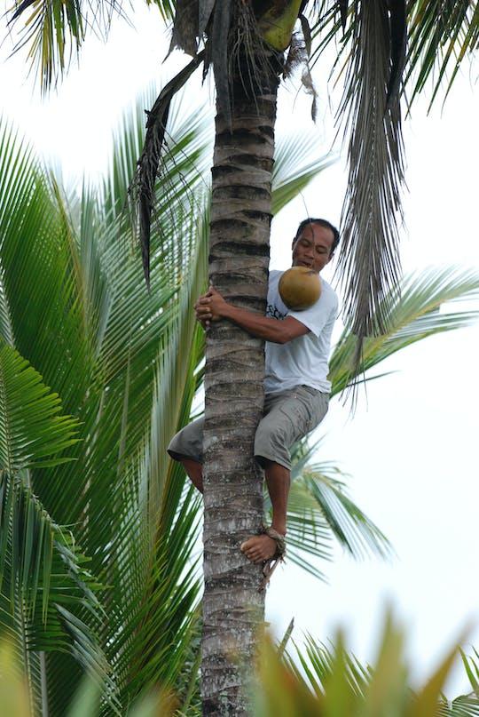 Bali eco-walk