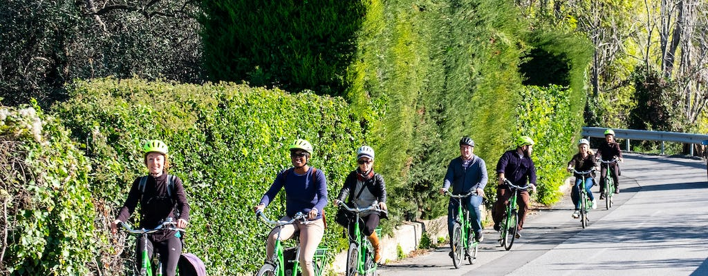Half-day e-bike vineyard tour with wine tasting from Nice