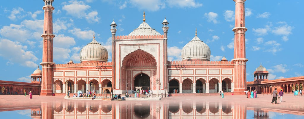 Explorando Delhi a tu propio ritmo