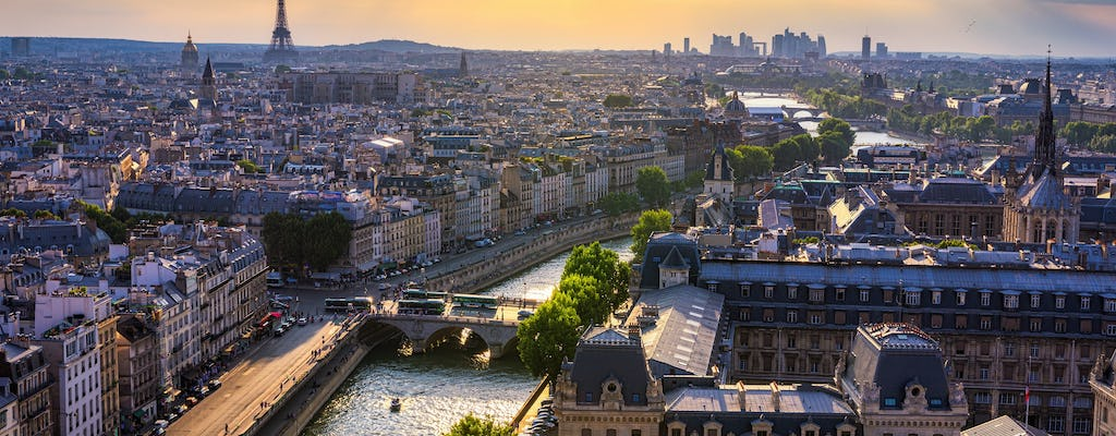 Paris sightseeing tour in minivan and commented cruise