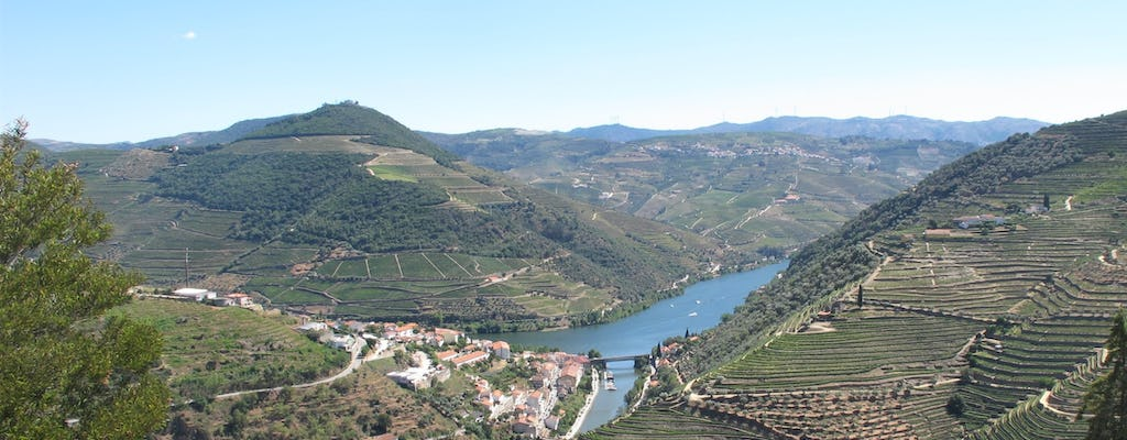 Visita privada ao Vale do Douro