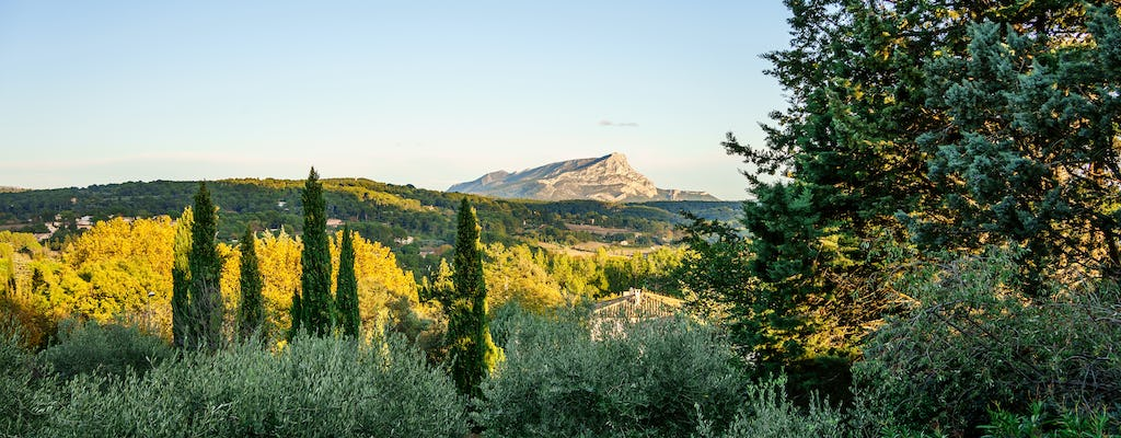 Full day tour of Cézanne's Aix-en-Provence with wine tasting