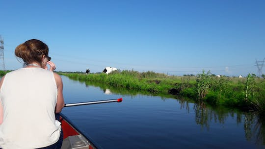 Guided canoe tour in the wetlands close to Amsterdam
