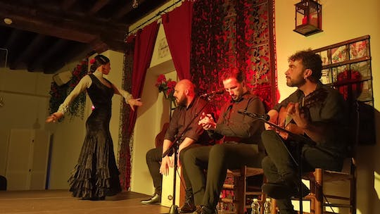 Flamenco tour and live show