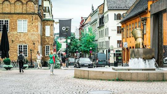 """Типичный норвежский """"ут па тур, Aldri Сура"""" частная пешеходная экскурсия"""
