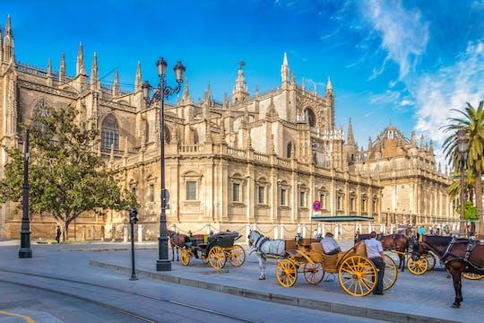 Guided tour of the Seville Cathedral and the Giralda
