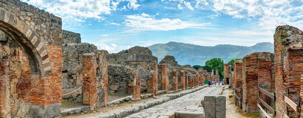 Archaeological site of Pompeii small-group tour with a local guide