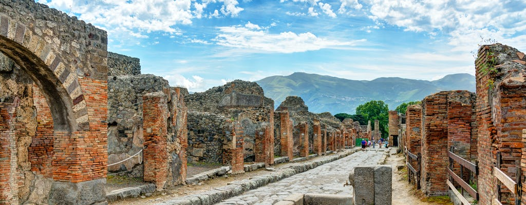 Guided tour of the archaeological site of Pompeii
