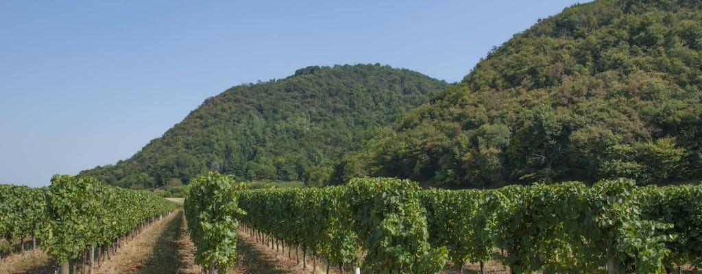 Tour de un día de cata de vinos y compras en Franciacorta