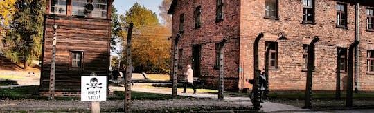 Visita guiada al Museo Auschwitz-Birkenau
