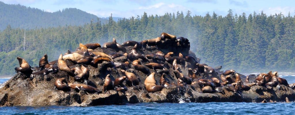 Observação de baleias em Port Renfrew e passeio pela vida selvagem