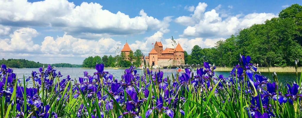 Tour di mezza giornata da Vilnius a Trakai con una visita guidata nel castello