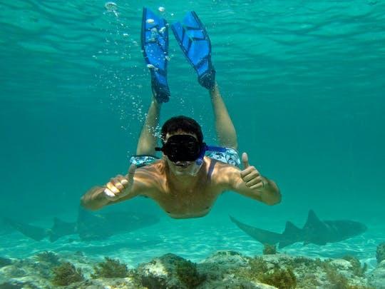 Punta Cana Snorkelling Tour