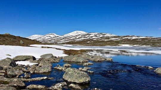 One week hike through Sarek and Padjelanta National Park