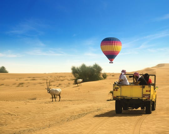 Hot air balloon ride, falconry, breakfast, wildlife drive