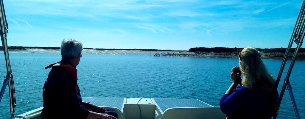 Algarve eco-friendly solar boat trip in Ria Formosa from Faro