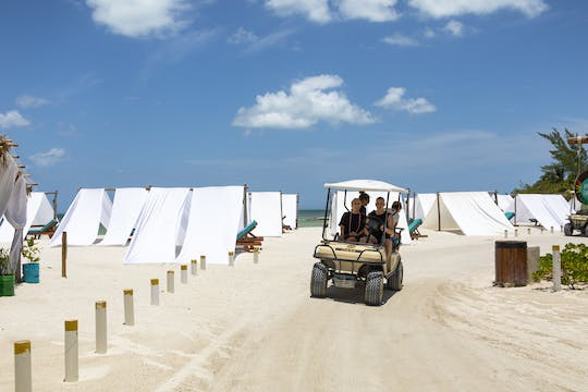 Holbox Island Boat & Buggy Tour