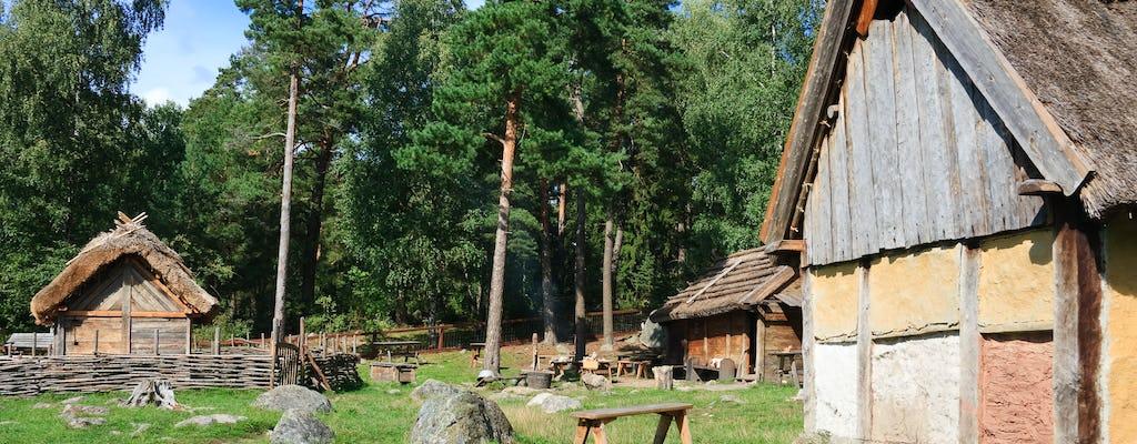 Viking era private excursion