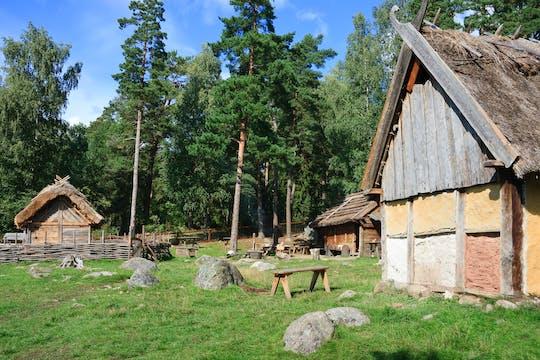 Excursión privada de la era vikinga