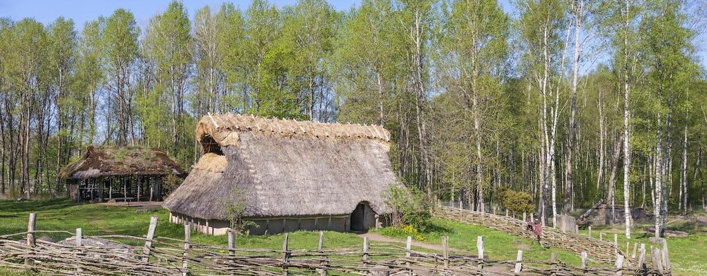 Il tour pubblico dell'età del bronzo di Stoccolma