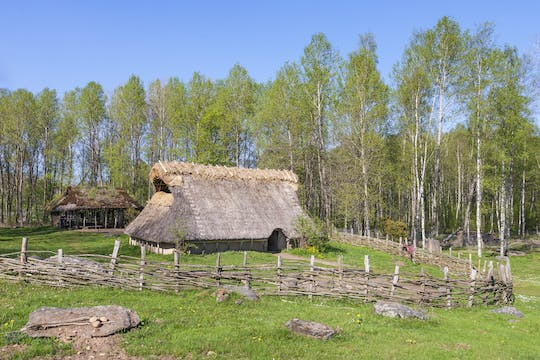 The Stockholm Bronze Age public tour