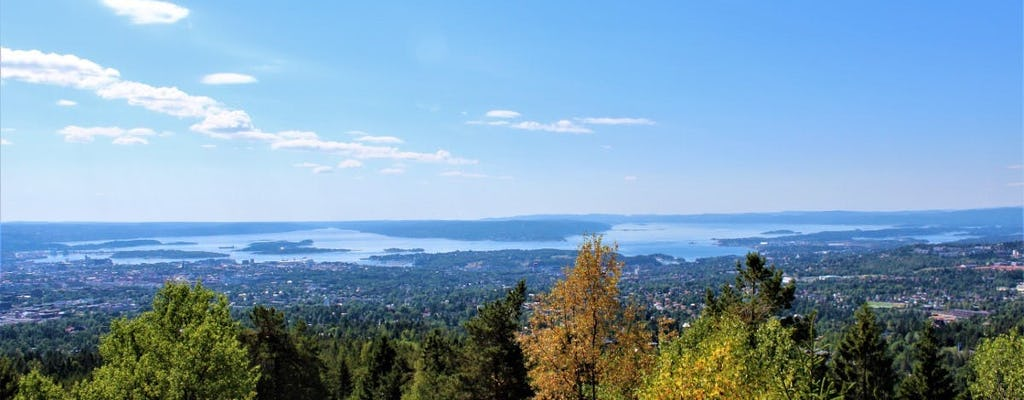 Admire scenic views of Oslo fjord during a walking tour