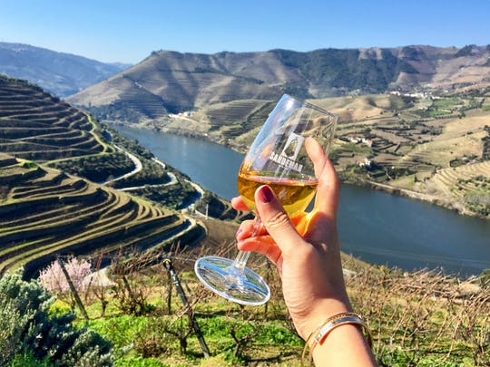 Tour de cata de vinos del valle del Duero desde Oporto