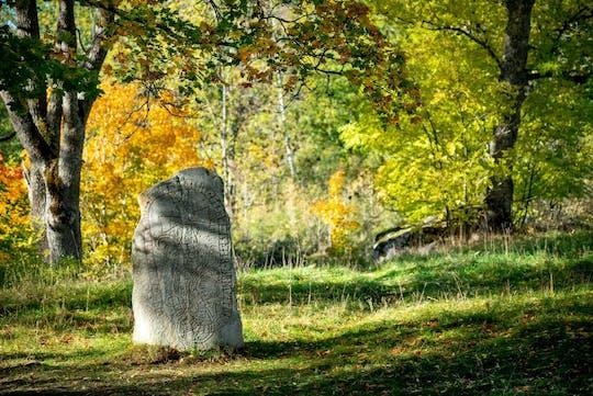 Private Viking geschiedenis halve dagtour