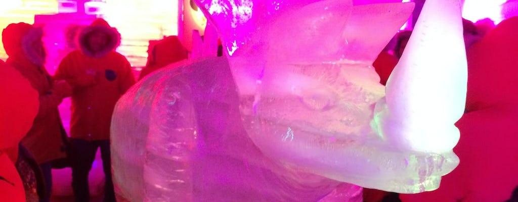 Ice Bar na Argentina com jantar e música ao vivo no Iguaçu